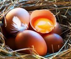 У 2015 Україна скоротила виробництво яєць на 15%