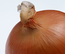 За последний месяц цены на лук снизились на 8-10%