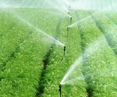 Відновлення зрошувальних систем - одна із складових підвищення урожайності