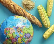 Украина в 2015 году не использовала квоты на поставки в ЕС баранины, грибов и чеснока