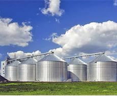 В Україні будується 12 зернових терміналів
