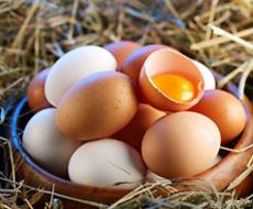 Минагропрод Украины опроверг наличие возбудителя сальмонеллы в экспортируемых в Израиль яйцах