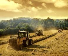 В 2015 г. в Украине были внедрены в производство около 50 видов сельхозмашин