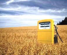 Нарощування виробництва біоетанолу – внесок в енергетичну незалежність України - Павленко