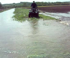 Без днепровской воды в Крыму невозможно полноценно заниматься с/хозяйством - эксперт