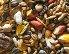 Как сохранить качество семян при очистке собственного урожая?