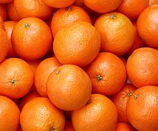 Грузия экспортировала 26,6 тыс. тонн мандаринов, почти 15% поставок пришлось на Украину