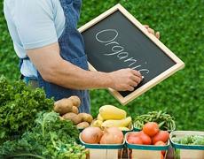 Органічне землеробство – крок до нарощування виробництва високоякісних продуктів харчування, - Павленко