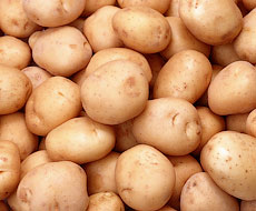 Украинский картофель пока не сможет выйти на рынок ЕС - Владимир Лапа