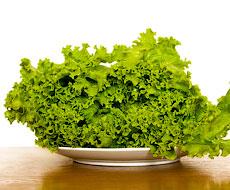 Україна призупиняє імпорт салату та капусти з Іспанії