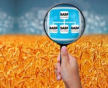 Компанія BASF запроваджує новий стандарт контролю каналу постачання продукції
