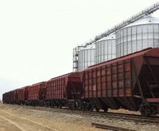 Укрзализныця: свободных зерновозов меньше на полтысячи
