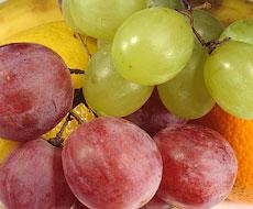 В Украине за 10 лет посадки виноградников сократились в 50 раз