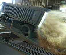 В Украине сократилось количество свободных вагонов-зерновозов