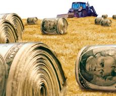 Минагропрод Украины намерен распаевать все 200 тыс. га министерских земель