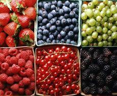 Украина увеличила экспорт ягод на 72%