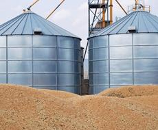 Аграрии экспортировали почти 28 миллионов тонн зерновых