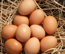 Птицефабрики в декабре увеличили продажу яиц до 770 млн. штук