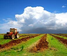 Україна в лютому збільшила імпорт тракторів на 65%