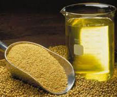 В феврале экспорт соевого масла из четырех ключевых стран увеличился