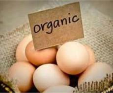 Объем производства яиц с начала года составил 2,111 млрд. шт.