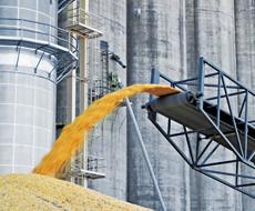 В январе-феврале 2016 г. средняя цена реализации зерна в Украине выросла на 22,2%