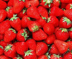 Свіжа полуниця на український ринок поставляється з Греції