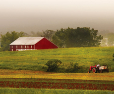 Гройсман: Ми повинні створити інфраструктуру для ефективної роботи малих фермерів