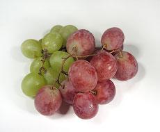Госпрограмма поддержки сельского хозяйства в Севастополе должна к 2019 году обеспечить рост производства виноматериалов на 38%