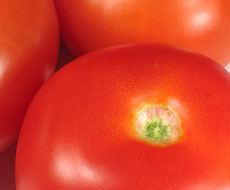 В більшості регіонів України подорожчали томати