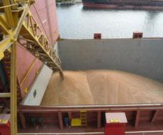 Морские порты Украины на прошедшей неделе уменьшили отгрузки зерна