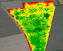 Компания Geosys впервые в Украине провела калибровку полей для определения индекса лиственной поверхности LAI