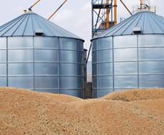 Китайцы заинтересовались строительством зерноперерабатывающих заводов в Украине