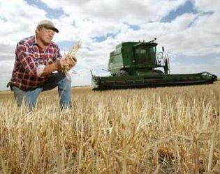 Кутовий пообіцяв підтримати сертифікацію продукції фермерів для доступу на ринки Євросоюзу