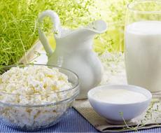 Європа наростила експорт молочних продуктів майже на 6%