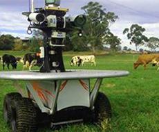 В Австралии создали робота-скотовода