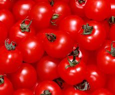 До України не пустили 20 тонн турецьких томатів - Держпродспоживслужба