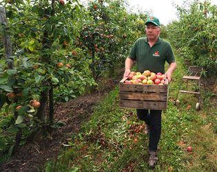 Швеція інвестує  2,5 млн євро на розвиток фермерства півдня України