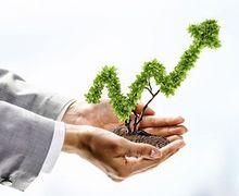 Освітній проект «Точка росту» допоміг аграріям побачити свій бізнес цілісно