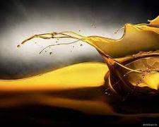 У травні 93% українського експорту високоолеїнової соняшникової олії прийшлося на країни ЄС