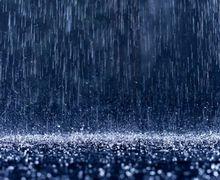 Від злив постраждали плодові дерева і суниця