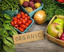 Ринок органічних продуктів в Україні становить 17 млн євро