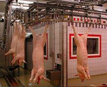 Вірменія перестала купувати українську свинину через АЧС