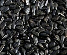Туреччина різко підвищила мита на імпорт соняшнику та соняшникової олії