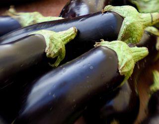 Фермери не бачать сенсу збирати баклажани ‒ дешевше лишити на полі