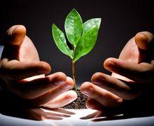УКАБ закликав уряд пришвидшити реєстрацію нових засобів захисту рослин