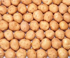 Картопля протягом серпня подешевшала на 7,6%