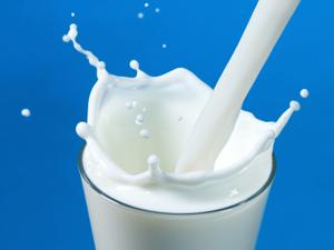 До кінця року закупівельна ціна на молоко екстра-ґатунку зросте до 8 гривень