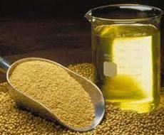 Єгипет має намір закупити 35 тис. тонн соняшникової та соєвої олії