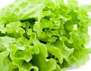 Україна повернула понад 4 тонни зараженого польського салату